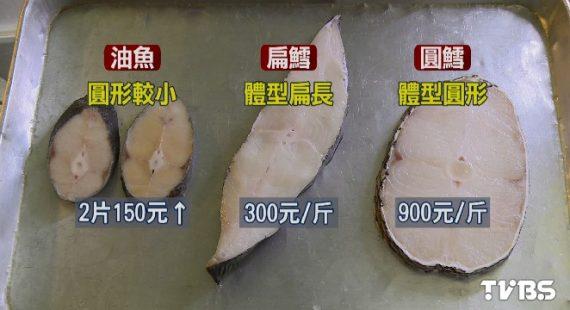 油魚鱈魚比一比