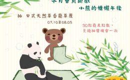本月會員鉅獻:小熊的慵懶午後